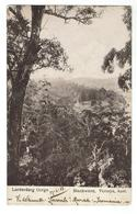LERDERDERG Gorge - 1906 - Australie