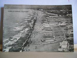 1958 - Apuania - Massa Carrara - Marina Di Carrara - La Spiaggia -  Cartolina D'epoca Originale - Carrara