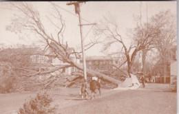 Connecticut Stonington Scene On Elm Street After '38 Hurricane - Other