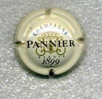 CAPSULE   PANNIER     Ref  38  !!! - Pannier