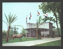 Exposition Universelle / Wereldtentoonstelling Expo 58 - Petit Format 9,9 X 7,4 Cm - Dominicaanse Republiek / Rep. Domin - Expositions Universelles