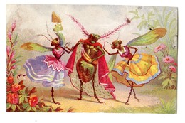 Rare Chromo Imp. Testu & Massin 41-5, Insects Humansiés - Trade Cards