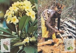 UNO GENF 186-187, 2 Private Maximumkarten, Heilpflanzen 1990 - Maximumkarten