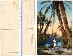 Cartolina Circa 1935 -  TRIPOLI - Raccoglitori Di Datteri  - AFRICA - LIBIA - Libia
