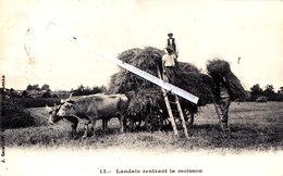 LANDAIS Rentrant La Moisson - Attelages