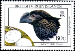 BIRDS- SMOOTH BILLED ANI  WITH EGGS - Br. VIRGIN ISLANDS-1990 -MNH- SCARCE- B6-984 - Coucous, Touracos