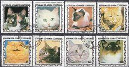 GUINEA EQUATORIALE - 1977 - Serie Completa Usata Di 8 Valori Raffiguranti Gatti Di Razze Diverse. - Guinea Equatoriale