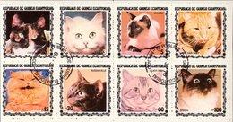 GUINEA EQUATORIALE - 1977 - Otto Valori Raffiguranti Gatti Di Razze Diverse In Minifoglio Usato - Mm. 95 X 188. - Äquatorial-Guinea