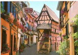 Eguisheim Rue Des Remparts Le Pigeonnier 2002   CPM Ou CPSM - France