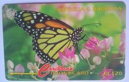 132CATC  Monarch Butterfly  EC$20 - Antigua En Barbuda
