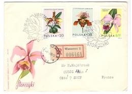 13661 - POLOGNE - Orchidee
