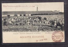 CPA BRESIL - PELOTAS - Harqueada ( Enfardaçao ) - Pelotas-Rio G. Do Sul-Brazil TB PLAN TB ANIMATION USINE 1904 - Brésil