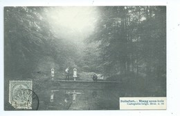 Boitsfort  Etang Sous Bois - Watermael-Boitsfort - Watermaal-Bosvoorde