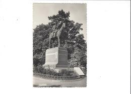 CASSEL MONUMENT DU MAL FOCH    ****      RARE    A   SAISIR ***** - Cassel