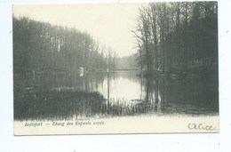 Boitsfort Etang Des Enfants Noyés DVD No 11811 - Watermael-Boitsfort - Watermaal-Bosvoorde