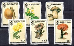 Serie De Burkina Faso Nº Yvert 639C/39F ** SETAS (MUSHROOMS) - Burkina Faso (1984-...)