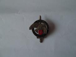 Insigne Militaire     Brevet De Commando  Entrainement     Drago  Gs 31   N° 7 - Heer