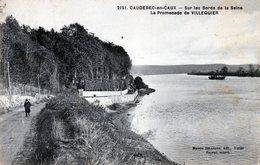 76 Caudebec En Caux Sur Les Bords De La Seine La Promenade De Villequier ( Unique Sur Delcampe) - Caudebec-en-Caux