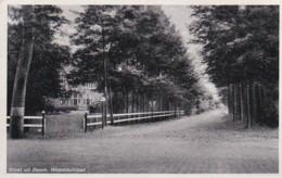28165Doorn, Woestduinlaan (poststempel 1939) (zie Hoeken) - Doorn