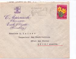 Schöne BEDARFSPOST / Geschäftspost   ESCH-sur-ALZETTE / Lux.  - Fa. C. Marnach - Gelaufen 1955 - Luxembourg