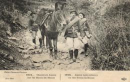 Militaria - Guerre 14/18 - Chasseurs Alpins Sur Les Hauts De Meuse - C 3975 - War 1914-18