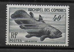 COMORES - YVERT N° 13 ** / MNH - POISSONS - COTE = 36 EUR. - Comoro Islands (1950-1975)