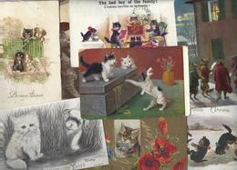 Lot 1599 De 10 CPA Chat Cat Katze Déstockage Pour Revendeurs Ou Collectionneurs - Cartes Postales