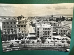 Cartolina Grosseto - Panorama - 1953 - Grosseto