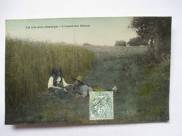 LA VIE AUX CHAMPS  -   L'AMOUR AUX CHAMPS             PLI - Agriculture