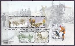 BLOK 2019 Dieren Aan Het Werk ( Buzin ) Postfris** BLN20192 - Blocks & Sheetlets 1962-....