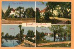 Bienowitz Bei Liegnitz Legnica Poland 1920 Postcard - Polen