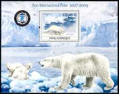 MOZAMBIQUE 2009** - International Polar Year - Block MNH, Come Da Scansione - Anno Polare Internazionale