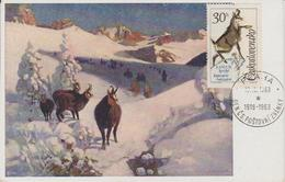 Tchécoslovaquie Carte Maximum 1963 Chamois 1306 - Cartas