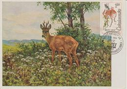 Tchécoslovaquie Carte Maximum 1963 Chevreuil 1309 - Cartas