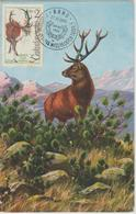 Tchécoslovaquie Carte Maximum 1963 Cerf 1311 - Cartas