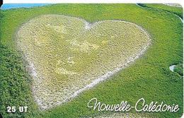 CARTE-PUCE-NOUVELLE-CALEDONIE-25U-SC7-NC81-COEUR DE VOH-UTILISE-TBE - New Caledonia
