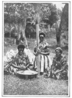 ILES FIDJI Préparation Du Kawa  1928 - Unclassified