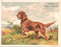 Figurina, Chromo, Victorian Trade Card. Maison De La Belle Jardinière. Cani. Les Chiens. Setter Irlandais. Sicard. - Altri