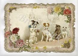 4 Dogs Smoking Pipe And Cigar, Dentelled Card  Rare, Chiens Fumant La Pipe Et Cigare , Dentellé  Rare En Parfait état - Honden