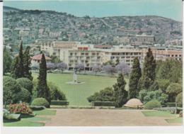 Postcard - Pretoria - Jacaranda Time, View From Union Buidings - Unused Very Good - Cartes Postales