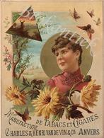 Charles & Henri VAN DE VIN & Cie  Manufacture De Tabacs Et Cigares  Nederrijns Drukwerk Chromolithografie +/- 1900 - Plaques En Carton