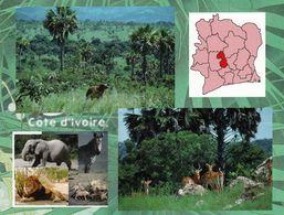 1 AK Elfenbeinküste Côte D'Ivoire * Ansichten Vom Nationalpark Marahoué, Er Wurde 1968 Eingerichtet * - Elfenbeinküste