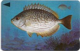 Bahrain - Fish Of Bahrain - Streaked Rabbitfish - 41BAHL - 1996, Used - Baharain