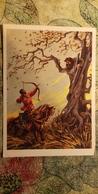 Russian Fairy Tale ,OLD USSR Postcard  - Archery -  1959  - - Archer - Tir à L'Arc