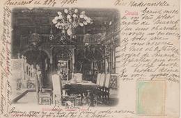 SINAIA           BIBLIOTECA  DIM CASTETUL PELES - Romania