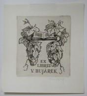 Ex-libris Illustré Tchecoslovaquie XXème - V. BUJAREK - Grappes De Raisin - Ex-libris