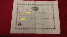 Rovigo Farmacia Collegio Farmaceutico Attestato Apprendista Al Banco Dato In Rovigo 1871 - Diplomi E Pagelle