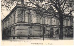 PARIS    MONTPELLIER  -FRANCIA   - LE MUSÉE - Montpellier