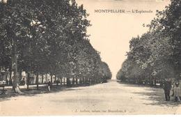 PARIS    MONTPELLIER  -FRANCIA   - L'ESPLANADE - Montpellier