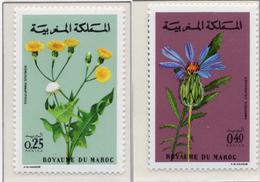 1972 - MAROCCO - MAROC - Yv:  Nr. 648649 - NH - (UP121.2) - Marocco (1956-...)